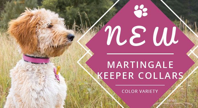 New Martingale Keeper Collars Collars Store Style