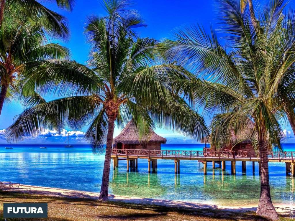 Paysage de Polynésie #fondecranhiver