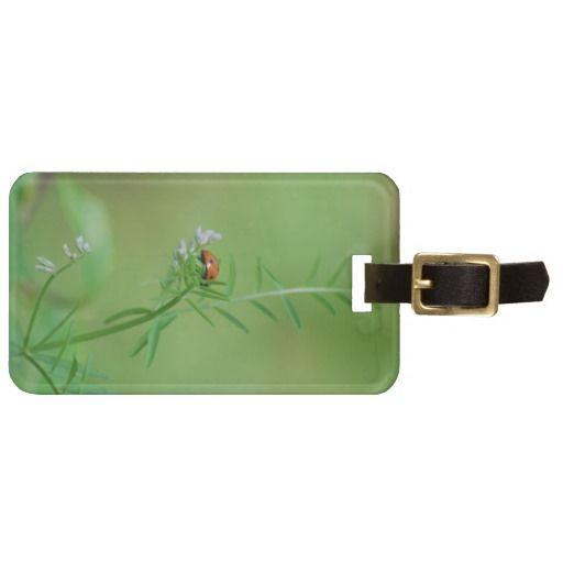 Ladybug on Green Travel Bag Tag  from ObservationCreations.com