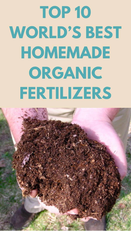 e4871825fadcc5bb828bf85aa00a0978 - Expert Gardener 10 10 10 Fertilizer