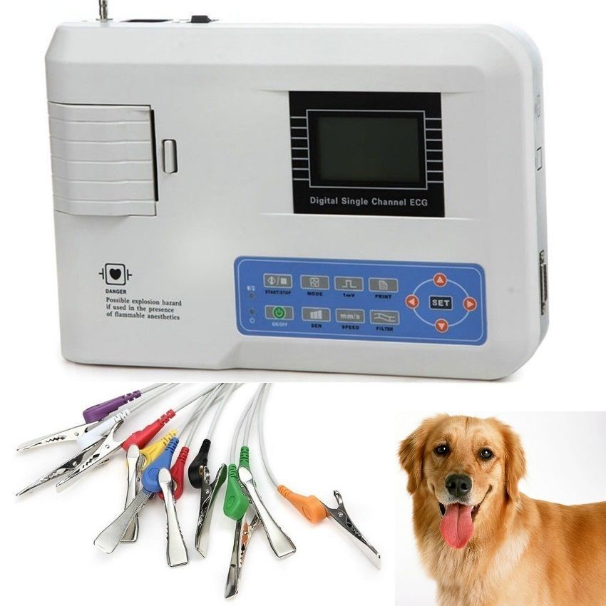 Ce Contec Ecg100g Single Channel 12 Lead Portable Ecg Machine For Veterinary Vet Channel Health Health Care