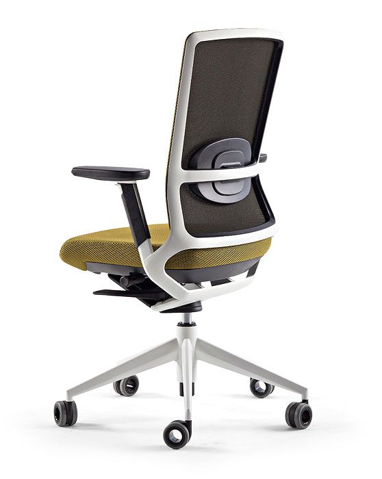Executive Office Chair Tnk 500 Ergonomic And Timeless Design