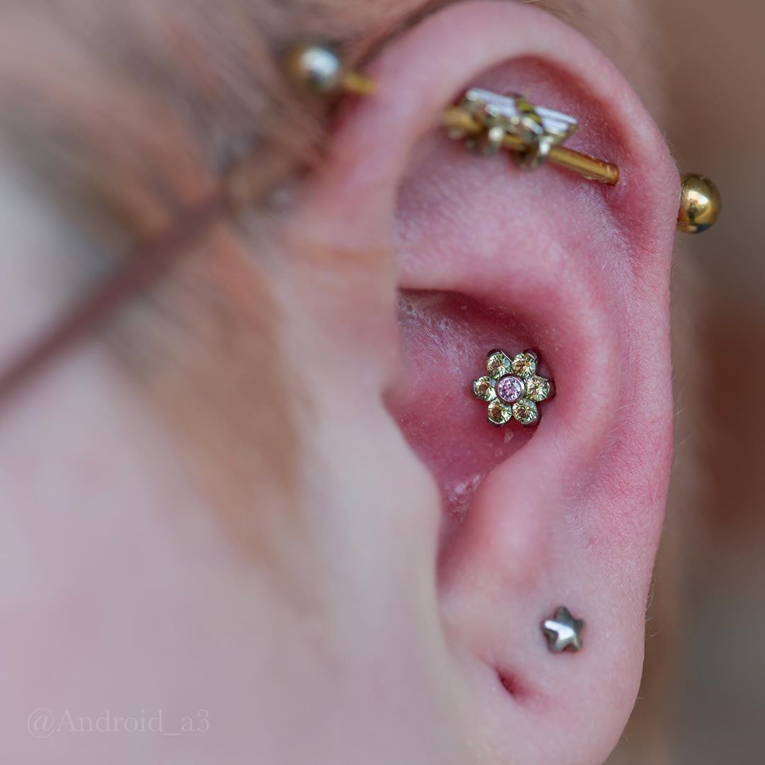 Good Morning Here Is A Conch Piercing With An Anatometal Flower Thank You For Looking Have A Great Day In 2020 Conch Piercing Anatometal Piercing