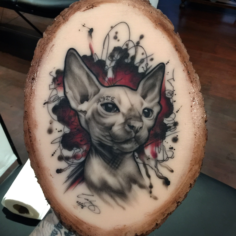 Sphynx cat on a plank of flesh sphynx tatoo pinterest for Hairless cat tattoo