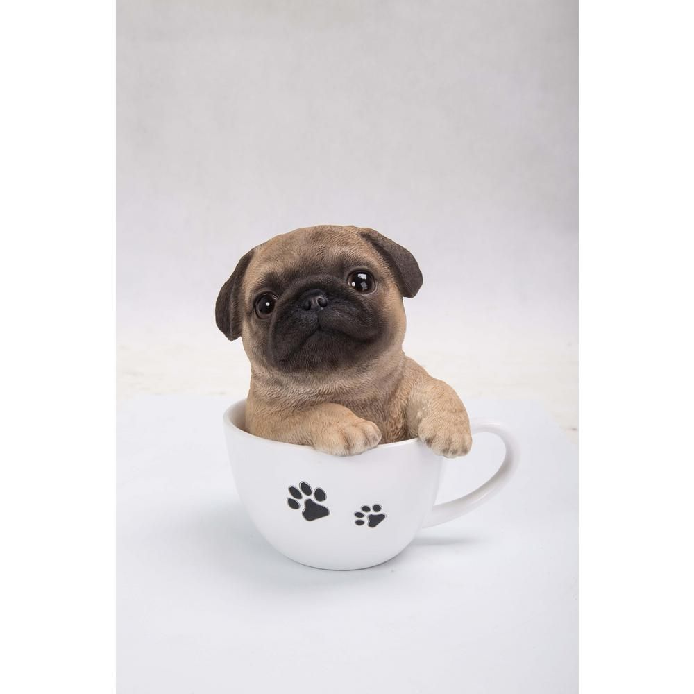 Hi Line Gift Teacup Pug Puppy Statue 87706 B Teacup Pug Baby