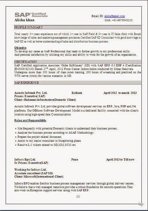 Download Resume Format In Word Document Beautiful Excellent
