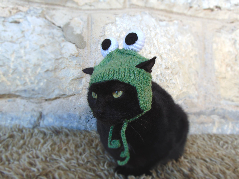 Frog Hat For Cat Frog Pet Costume Cat Accessories Kitten Etsy In 2020 Pet Costumes Cat Pet Costumes Cat Accessories