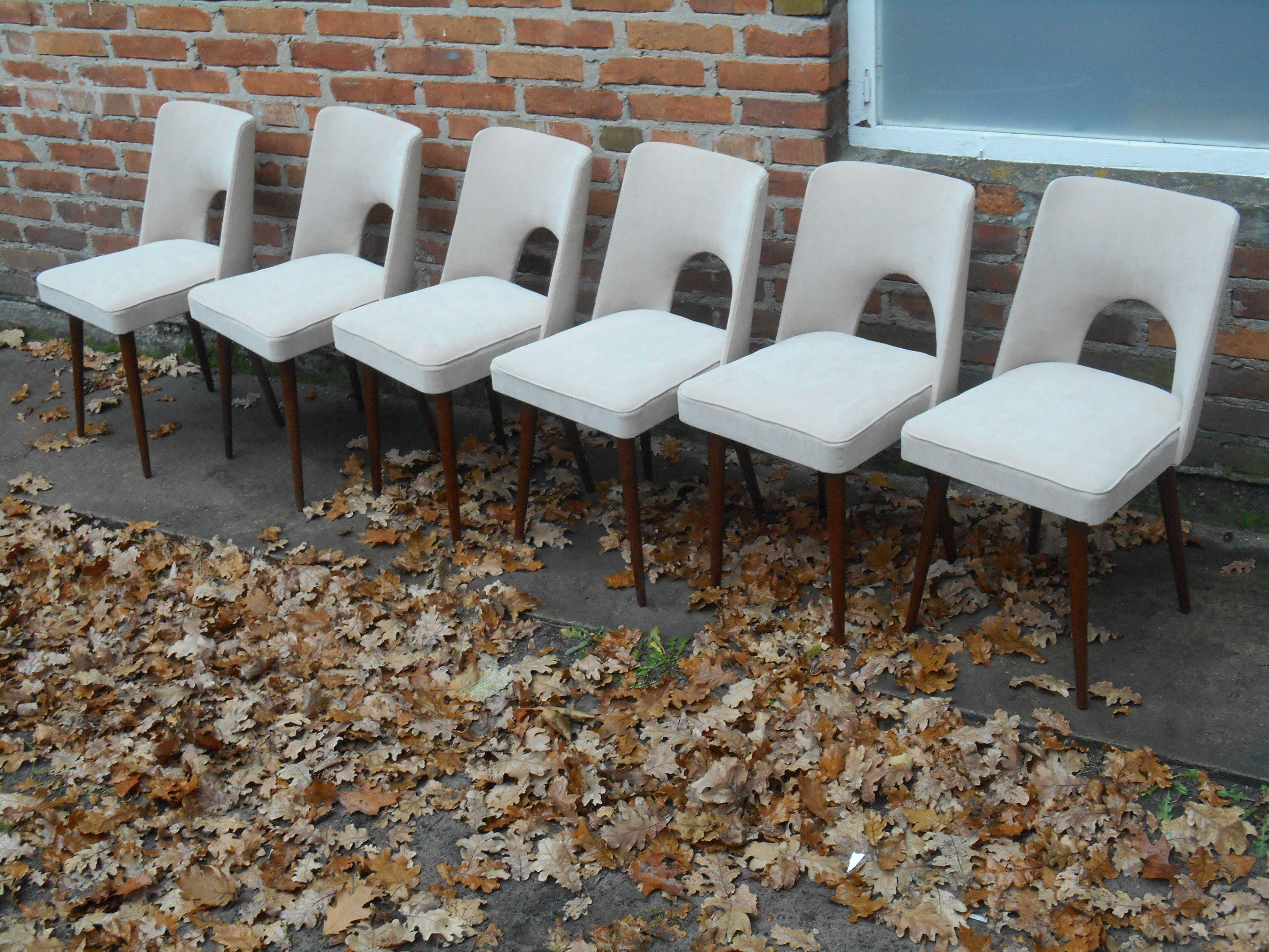"""Krzesła """"Muszelki"""" Słupskie Fabryki Mebli lata 50 te kt³re"""