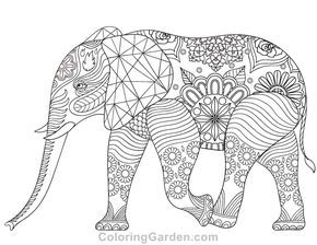 free printable elephant adult coloring page download it in pdf format at http//coloringgarden