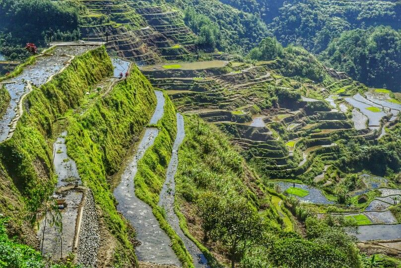 1000 Rice Terraces, Banaue, Ifugao Province, Philippines