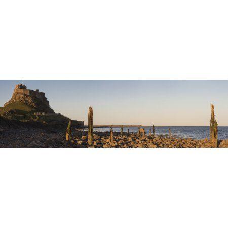 Lindisfarne Castle Holy Island Northumberland England Canvas Art - John Short Design Pics (44 x 13)