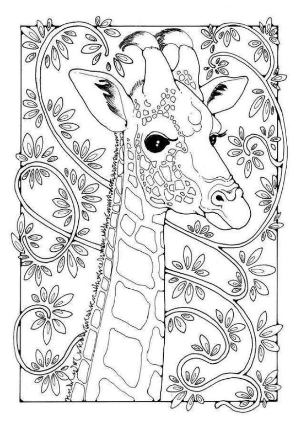 Giraffe Coloring Pages Giraffe Coloring Pages 8211 Giraffe Coloring Pages In 2020 Giraffe Coloring Pages Cute Coloring Pages Animal Coloring Pages