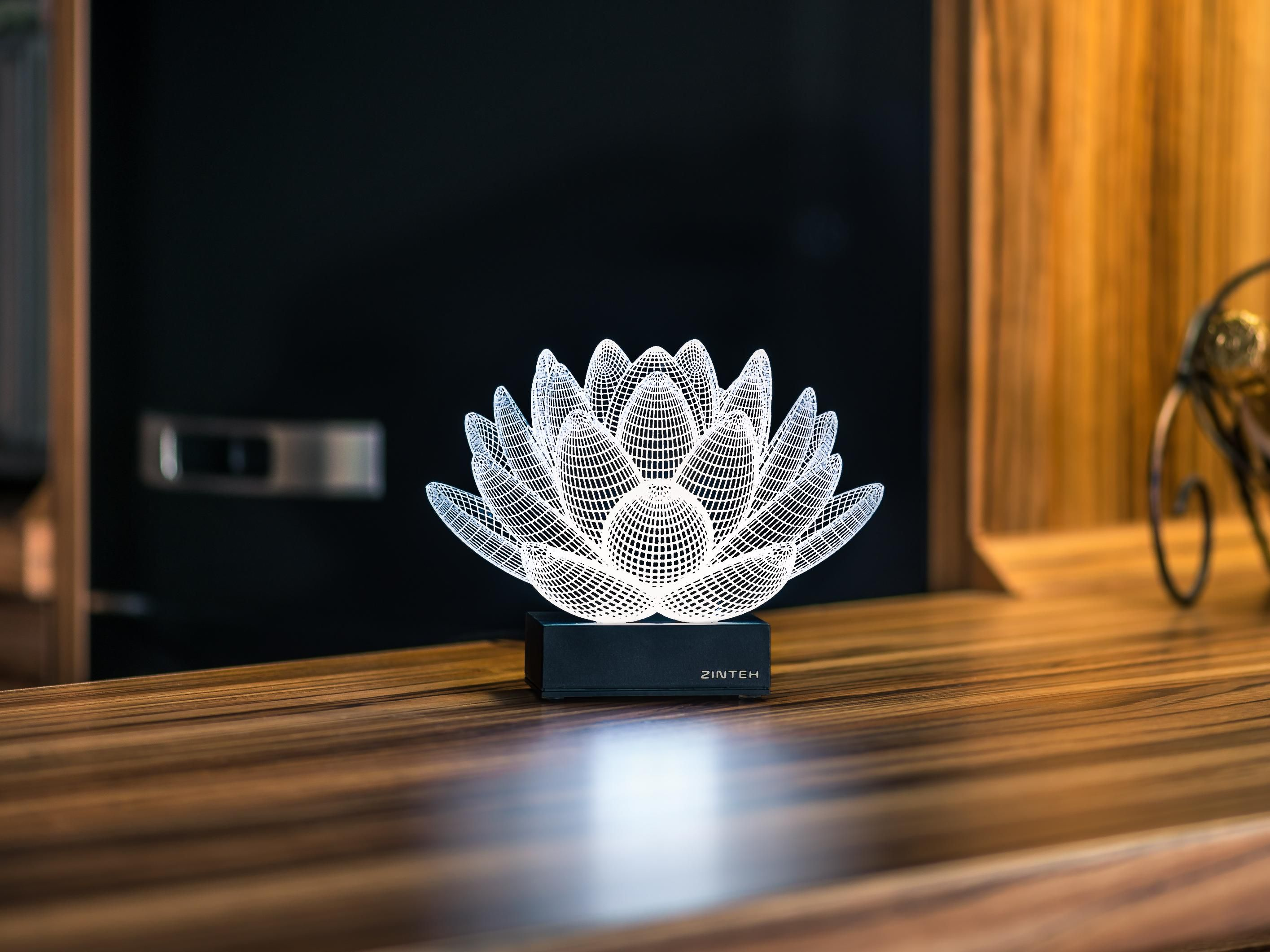 Lotus 3d Illusion Led Lamp Sovremennye Lampy Svetodiodnaya Lampa Dizajn Sveta