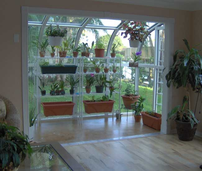 The gardener in me SCREAMS for an indoor solarium! How