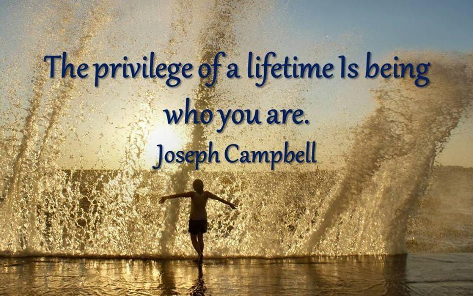 The privilege ...
