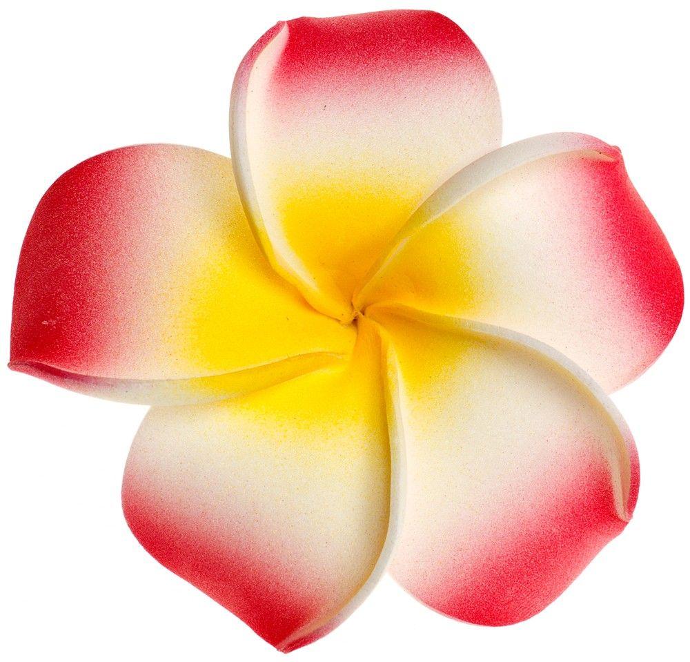 Plumeria flower clipart clipart best hawaiian flowers tattoo plumeria flower clipart clipart best izmirmasajfo