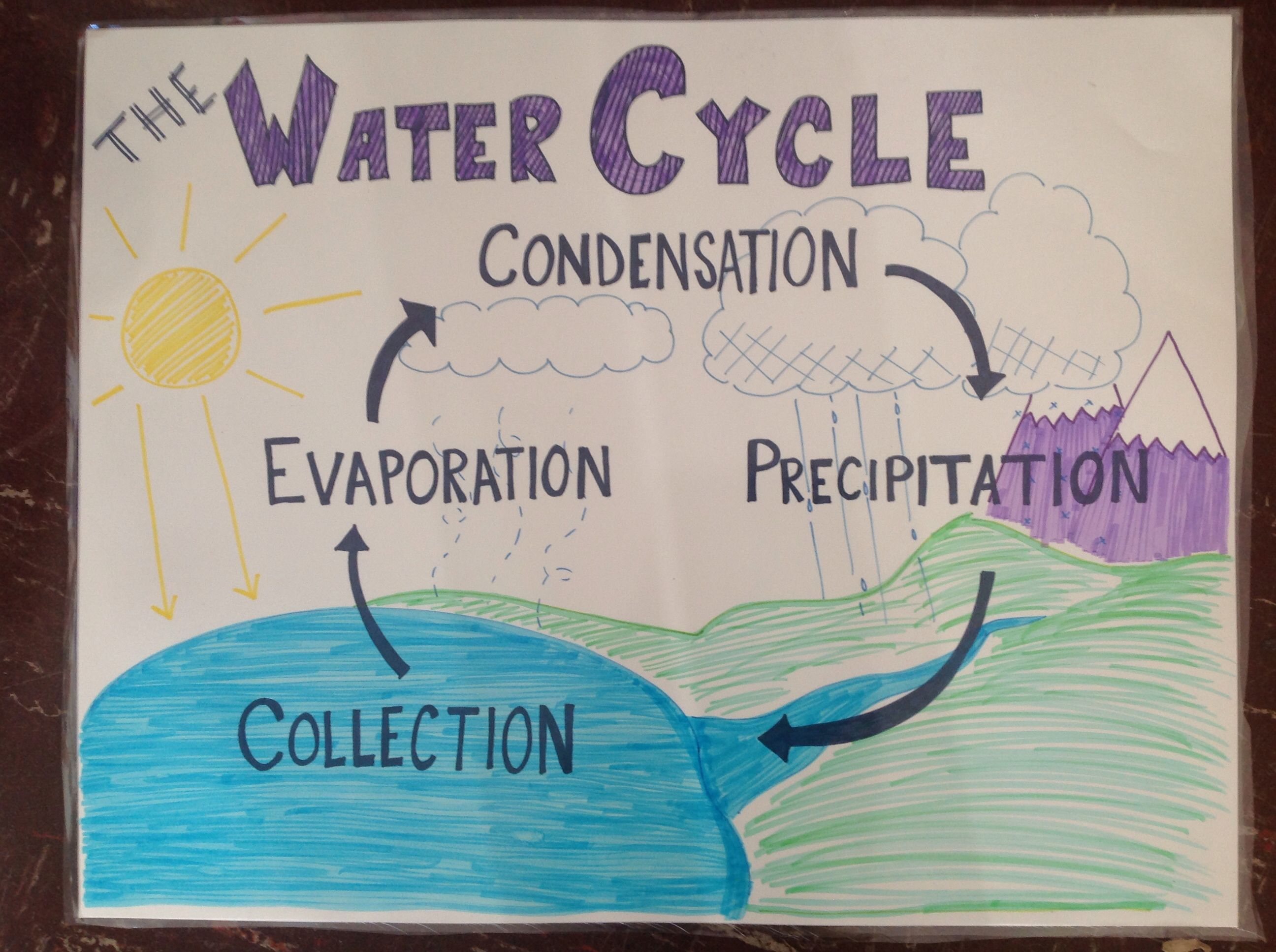 Water cycle anchor chart also science pinterest charts rh