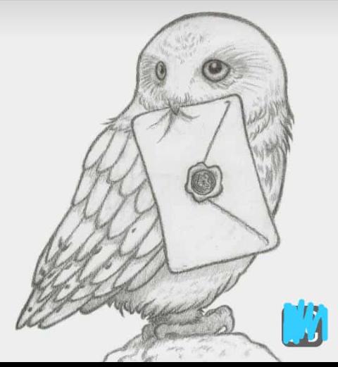 Pin Von Aleksandr Skupejko Auf Harry Potter Zeichnungen Zeichnung Kunst Skizzen