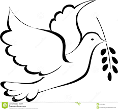 pomba da paz desenho pesquisa google beleza pinterest pomba