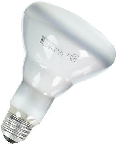 Outdoor Decorative Lighting Sylvania Lighting Br30 65w 120volt