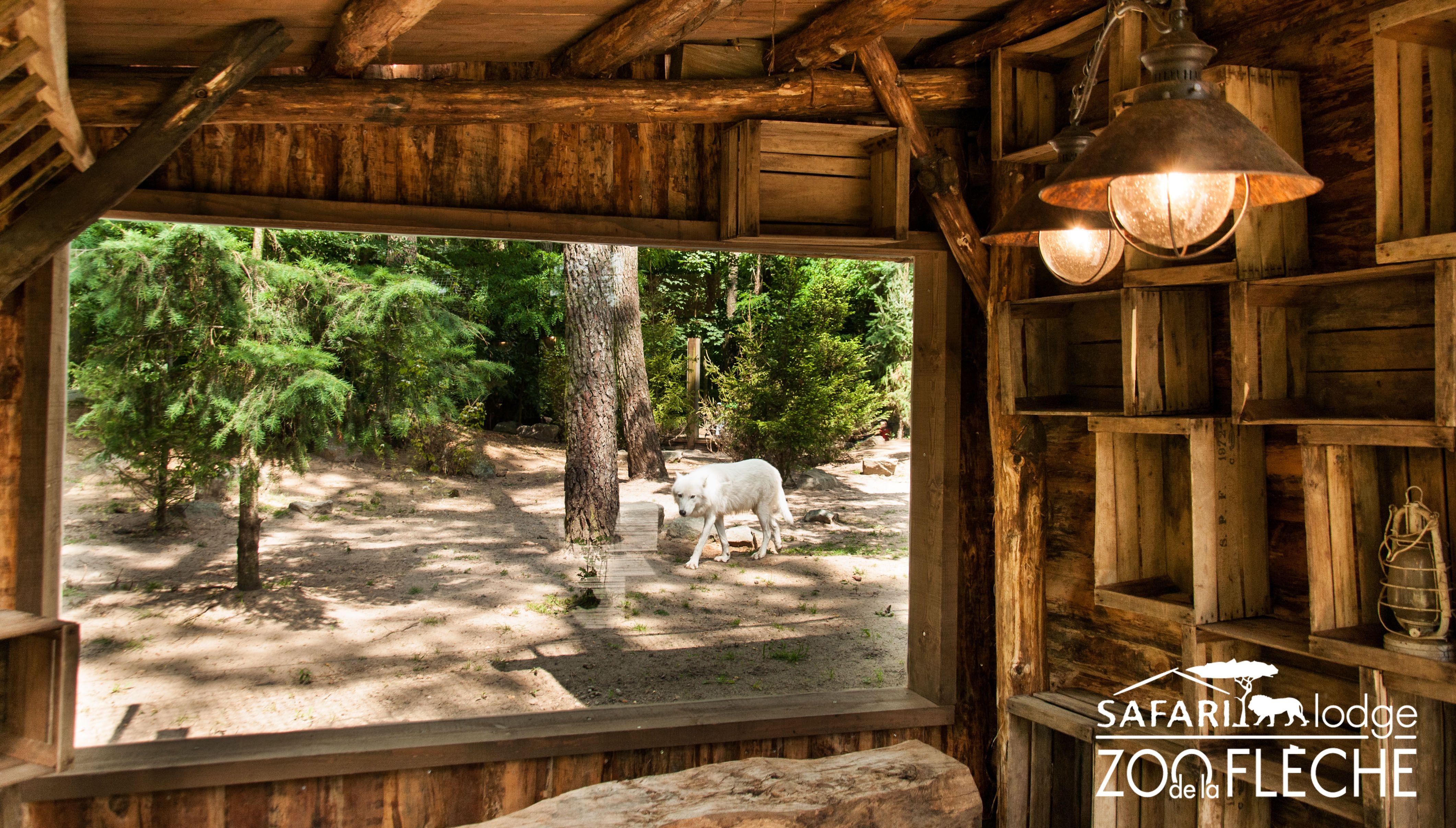 Hudson Lodge Terrasse Exterieure Avec Vue Sur Le Parc Des Loups