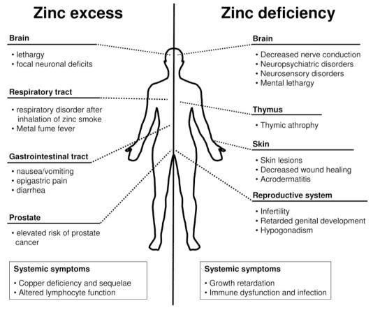 prostate zinc deficiency