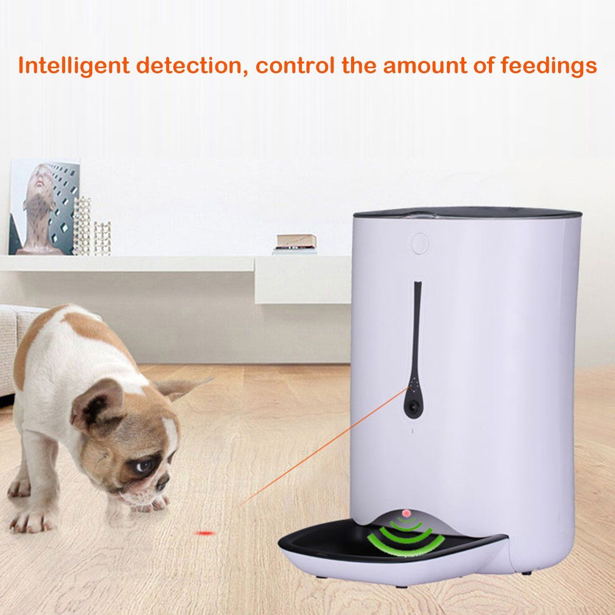Automatic Pet Feeder Food Dispenser For Dog And Cat Features