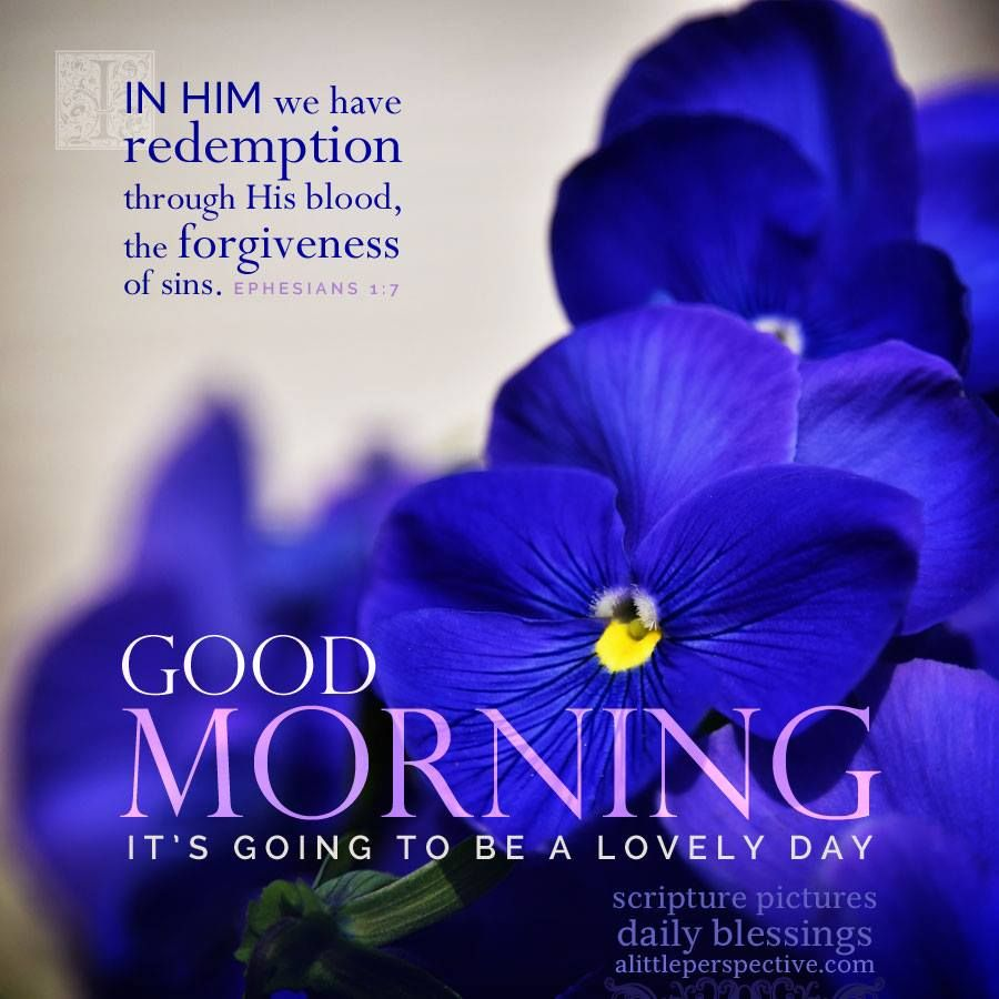 Daily greeting quotes images greetings card design simple good morning daily blessings from alittleperspective gud m4hsunfo