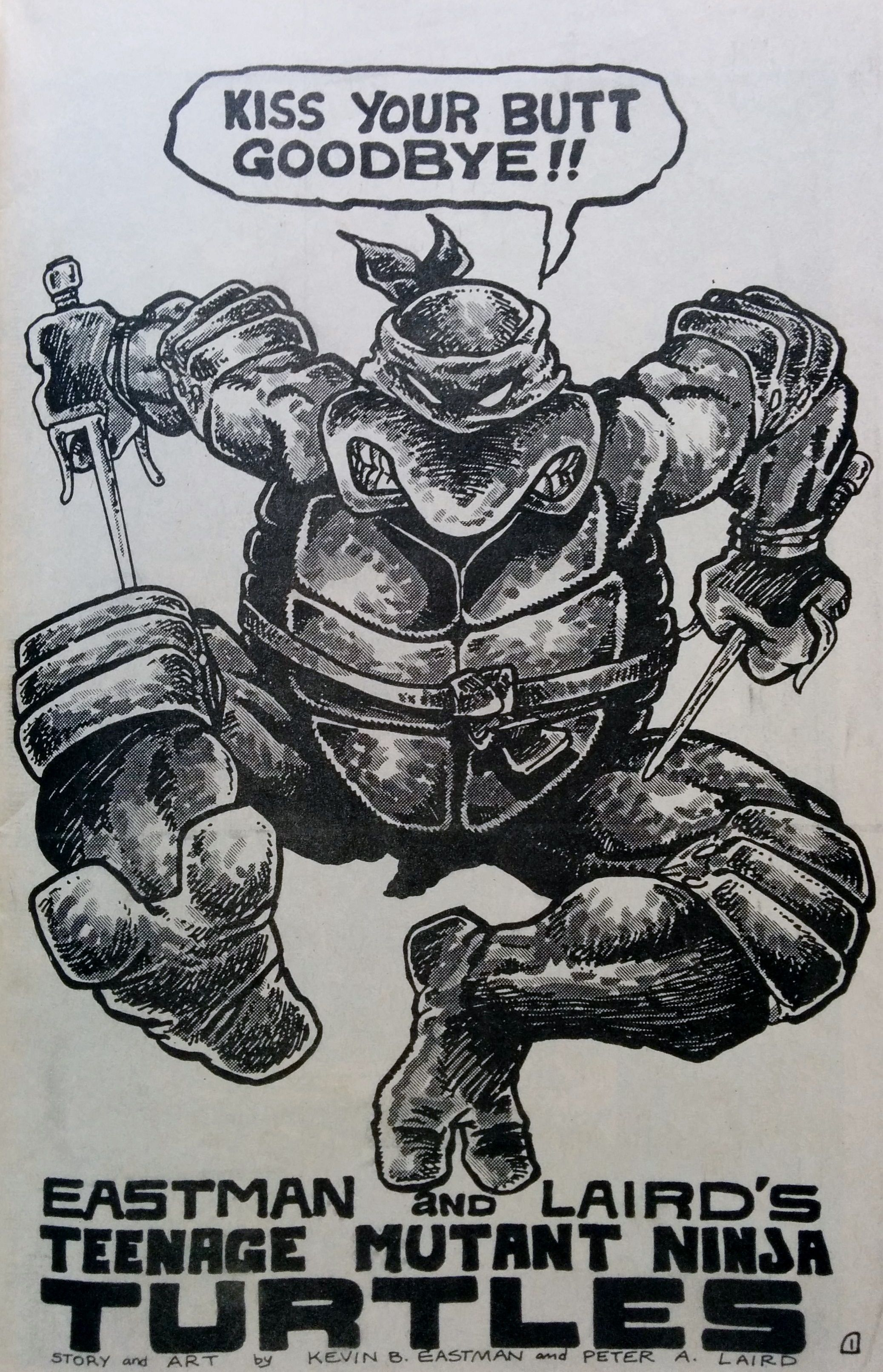 Teenage Mutant Ninja Turtles splash page by Kevin Eastman & Peter ...