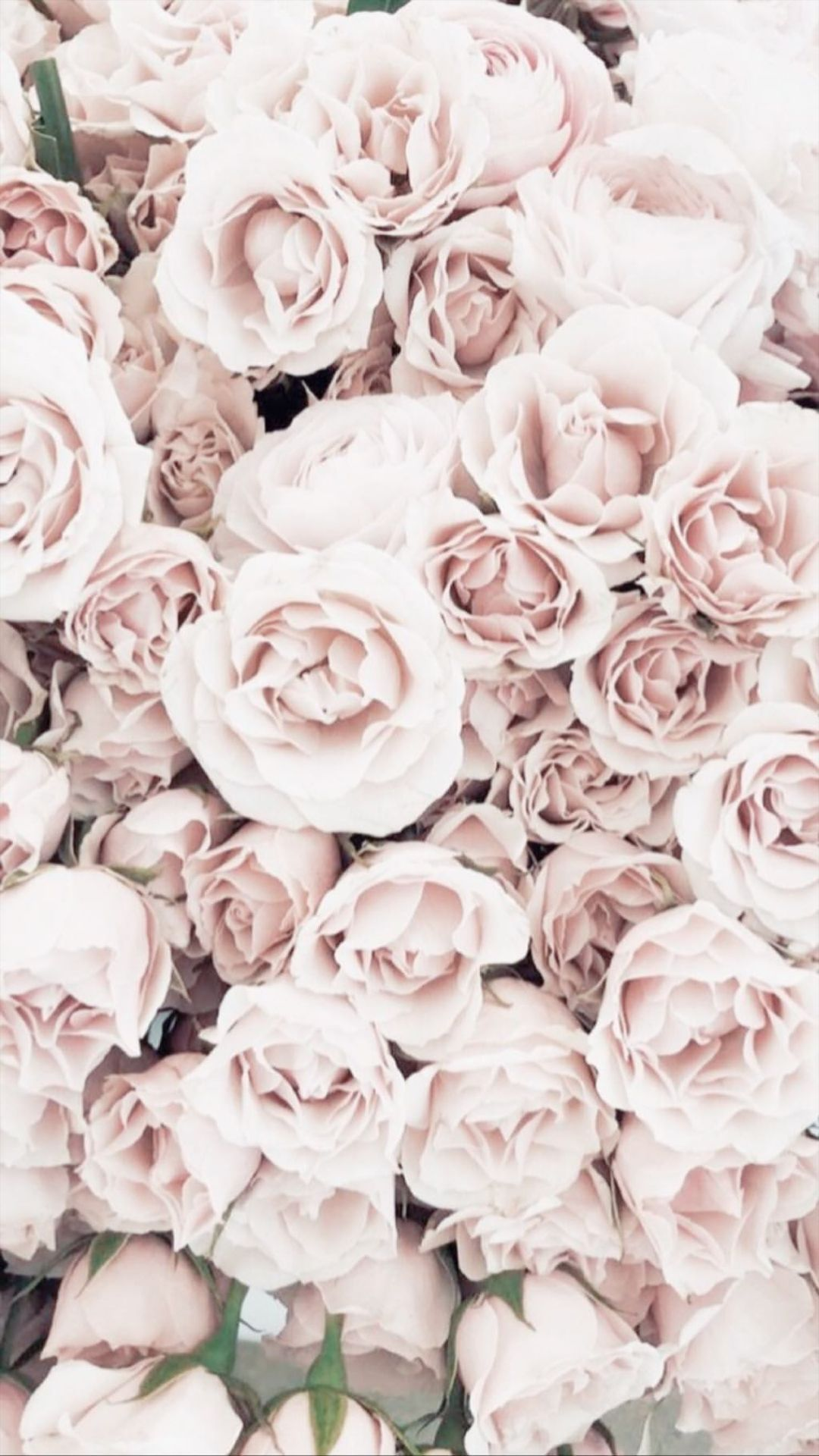 Aesthetic Pink And White Wallpaper Download Flower Aesthetic Rose Gold Marble Wallpaper Flower Wallpaper
