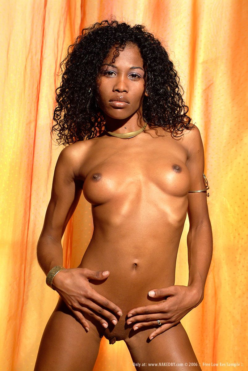 Free Beautiful Black Women Porn