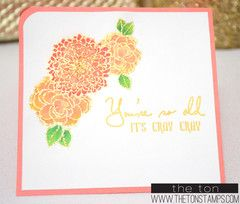 Simple Florals from The Ton Stamps company..Just saw this website on an email from Catherine Pooler and love it.