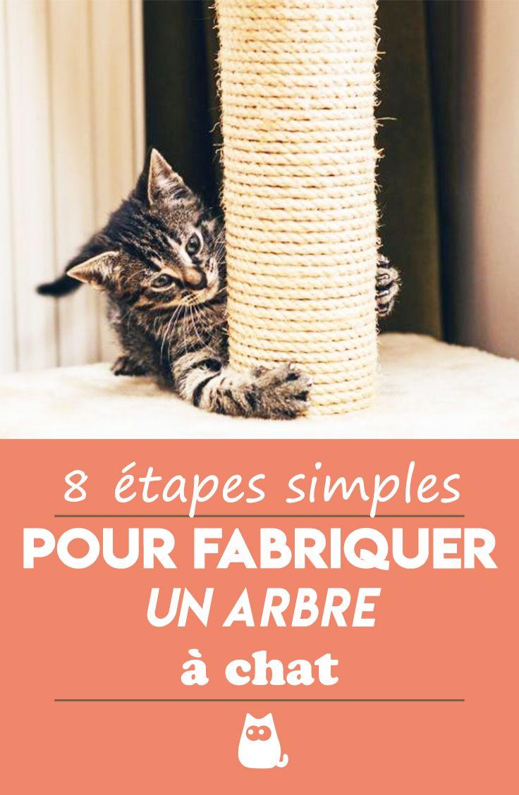 Comment Fabriquer Un Arbre À Chat comment fabriquer un griffoir pour chat ? - Étapes + vidÉo