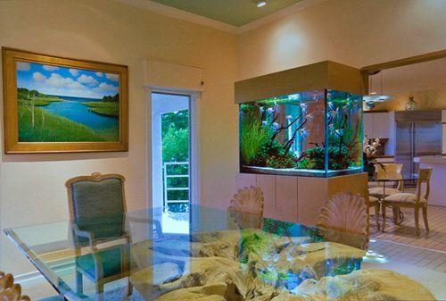 Design Aquarium Kast : Aquário grande para sala dream aquarium design