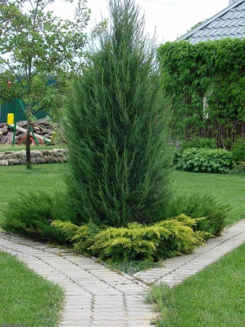 Photo of Gardens On A Hill – Landscaping #landscapingslopinggarden