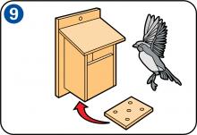 ein vogelhaus bauen schritt f r schritt skilhelps garten vogelhaus bauen vogelhaus selber. Black Bedroom Furniture Sets. Home Design Ideas