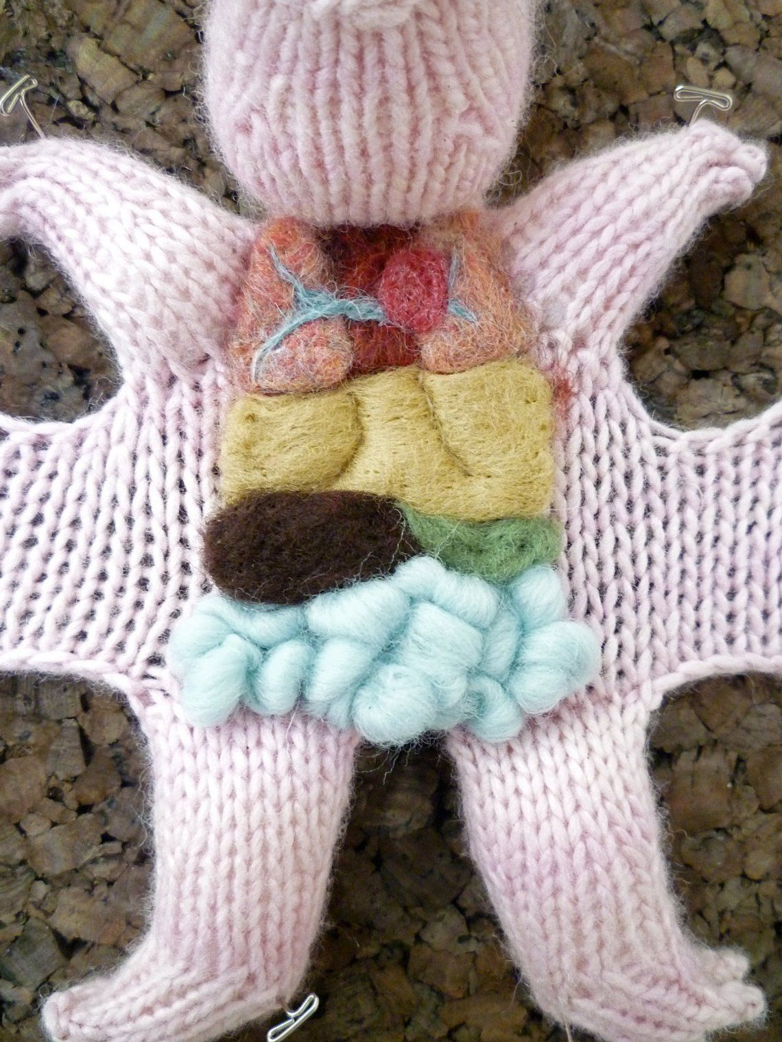 Knitted Fetal Pig Dissection Pattern
