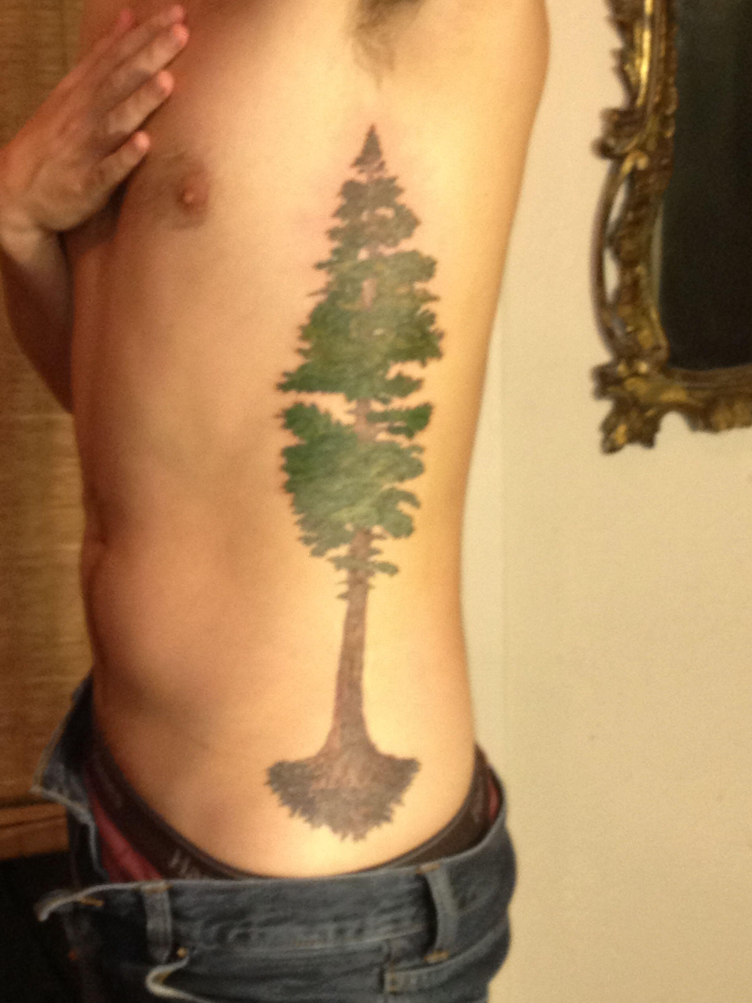 redwood tattoo tattoos pinterest redwood tattoo tattoo and body art. Black Bedroom Furniture Sets. Home Design Ideas