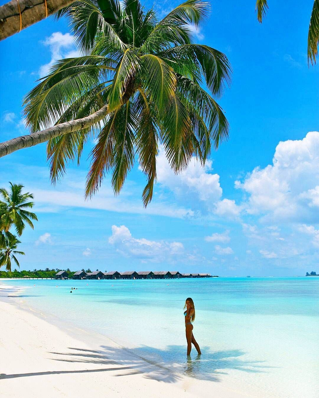 Island Beach Scenes: Maldives Island, Beach Photography, Photo