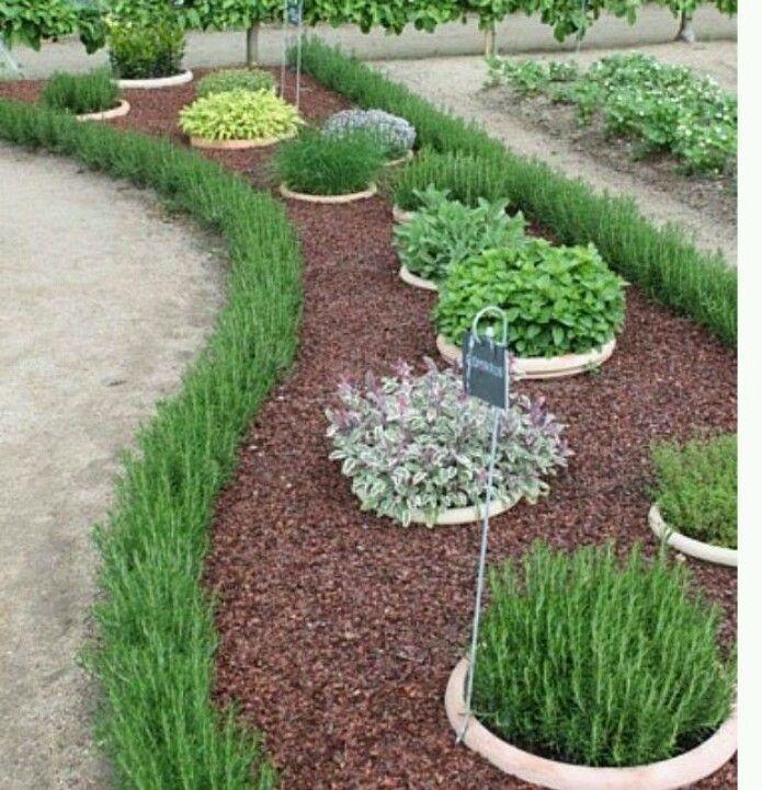 Herb garden in sunken pots garden ideas pinterest herbs garden herb garden in sunken pots sisterspd