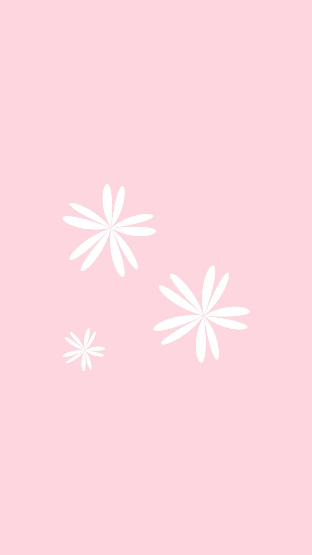 Fondos Rosa Pastel Fondos Rosa Pastel Fondos Color Rosa Fondos Color Rosa Pastel