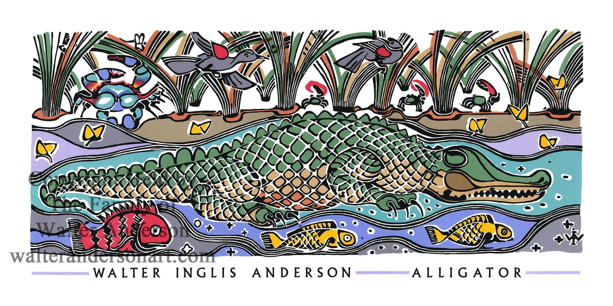 Alligator in marsh grass with images walter anderson