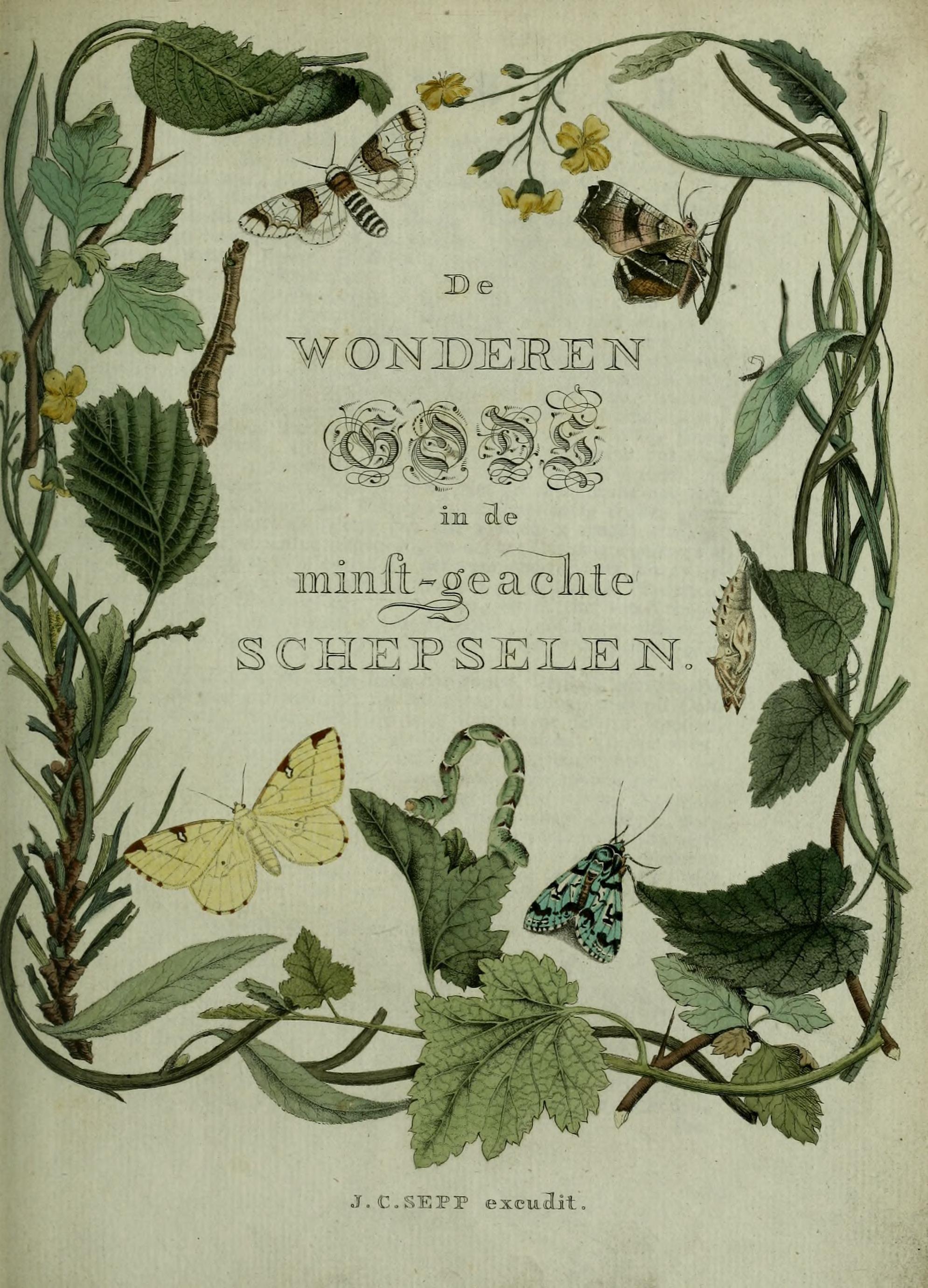 """Jan Christiaan Sepp 1762 """"beschouwing Der Wonderen Gods"""