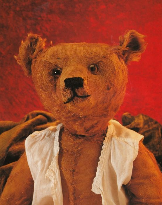 Excelsior Stuffed Old Ted....  Photo by Mirja De Vries...
