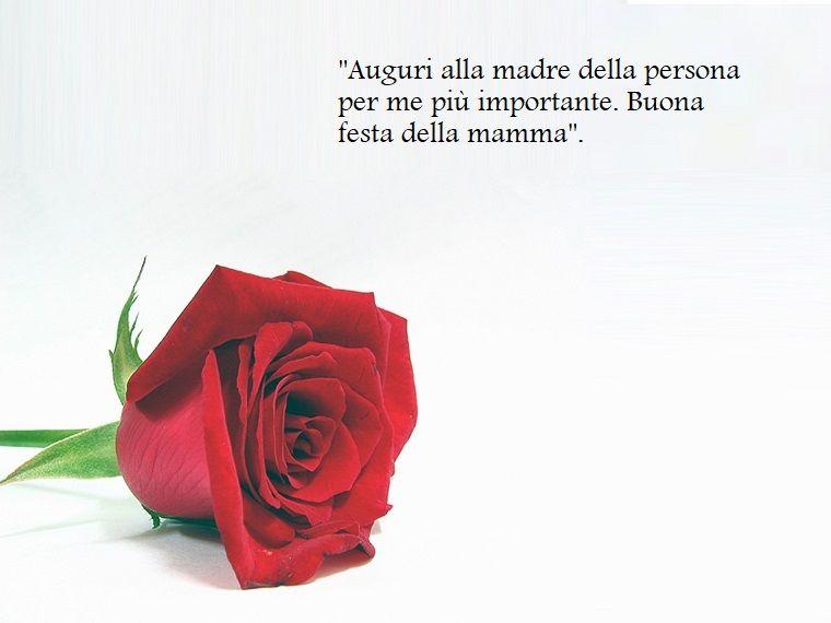 Immagine Con Una Rosa Rossa E Sfondo Bianco Scritta Per La Festa