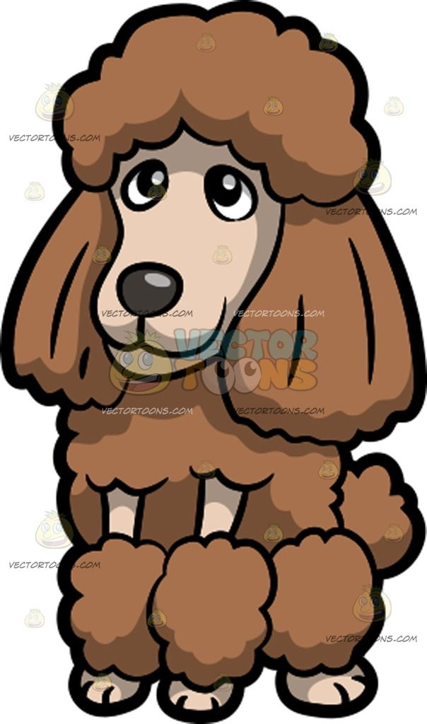 Wonderful Fur Brown Adorable Dog - e49a01530f5ee62e1a976c1b537371d9  Pictures_909941  .jpg