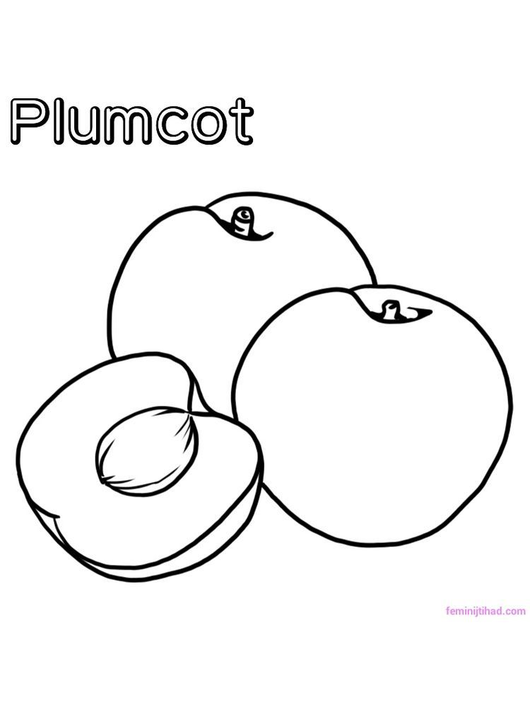 Printable Plumcot Coloring Pages