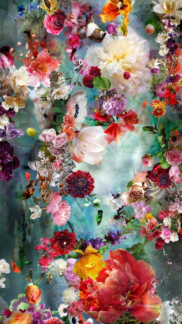 Flower Drawing Wallpaper Iphone Wallpaper Nature Flowers Floral Wallpaper Iphone Drawing Wallpaper Iphone colorful flower wallpaper
