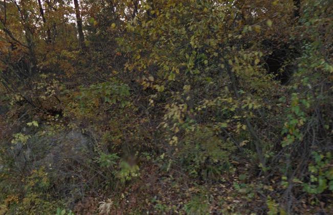 宮城県仙台市宮城野区にある宮城県県民の森の防空壕。仙台は太平洋戦争末期の1945(昭和20)年7月10日...宮城県仙台市宮城野区岩切
