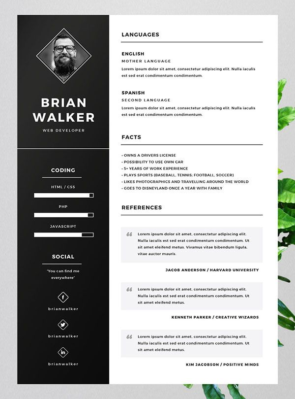 template pour cv indesign
